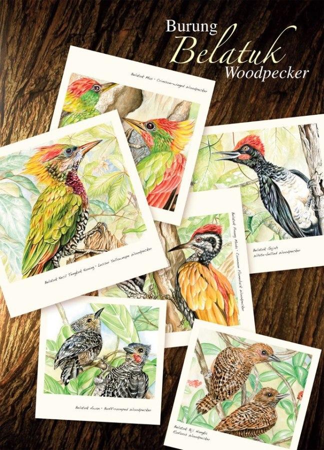 Woodpecker Folder