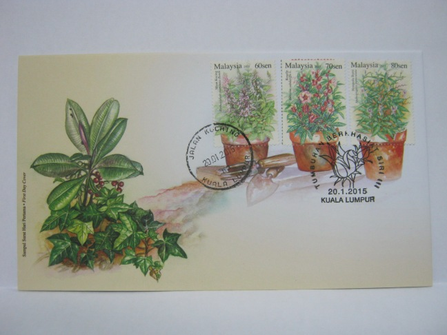 20150120 Jln Kuching KL Medicinal Plants 3