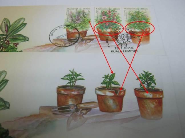 Matching Errors Medicinal Plants Series 3