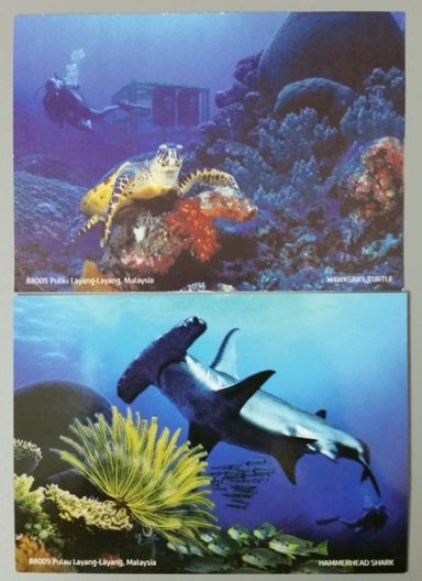 Pos Malaysia Pulau Layang Layang Underwater and normal postcards front